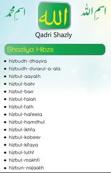 qadrishazly screenshot 1