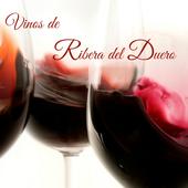 Vinos Ribera del Duero icon