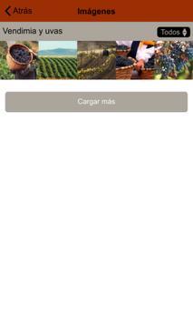 Vinos Ribera del Duero screenshot 4