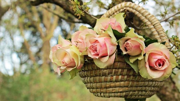 Flower Basket Wallpaper apk screenshot