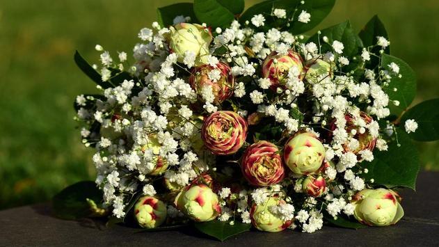 Flower Gift Wallpaper screenshot 2