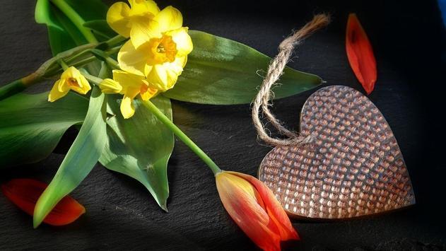 Flower Gift Wallpaper apk screenshot