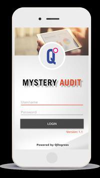 Mystery Audit screenshot 1