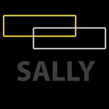 سالي الساسي poster