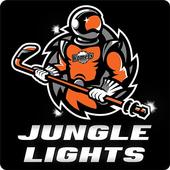 Jungle Lights icon