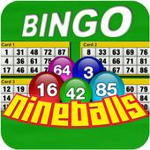 Nine Balls Video Bingo icon