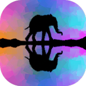 Pic Mirror Effect icon