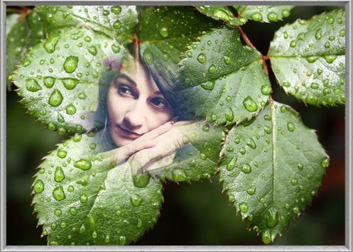 Leaf Photo Frames screenshot 4
