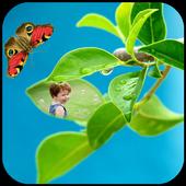 Leaf Photo Frame icon