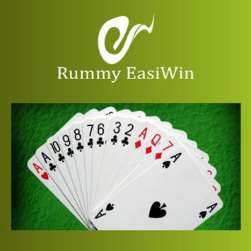 cards easiwin скриншот 1