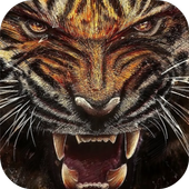 Tiger Wallpapers Lite icon