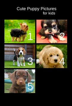Cute Puppy Pictures For kids poster