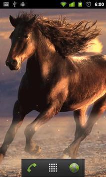 running horses wallpaper apk screenshot