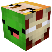 Skin Editor Tool for Minecraft icon
