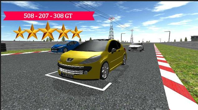 508 - 207 - 308 GT Racing 2017 apk screenshot