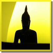 Daily Gautama Buddha Quotes simgesi
