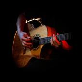 Acoustic Guitar Pro icon