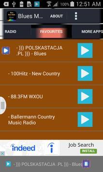 Blues Music Radio screenshot 1