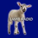 Messianic Lamb Radio APK