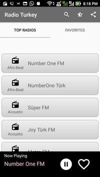 Radio Turkey poster
