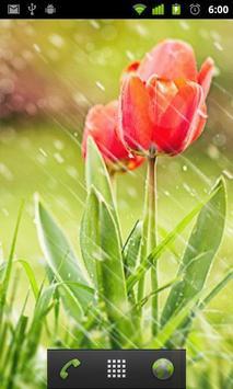 rain wallpapers apk screenshot