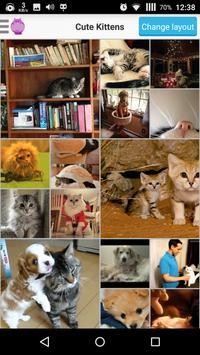 Best Cute Animal Photos poster