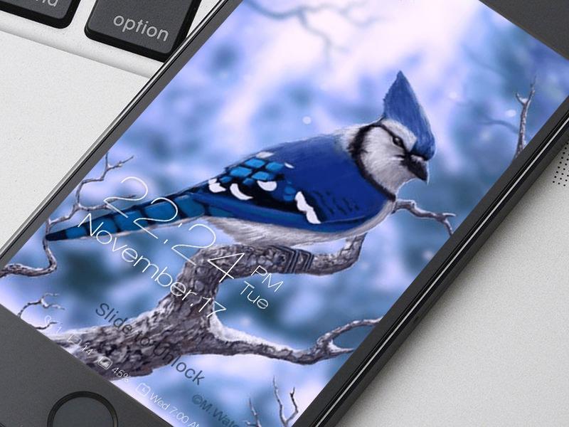 Birds Wallpaper Hd Lockscreen For Android Apk Download