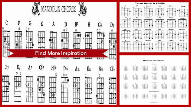Beginner Mandolin Chords For Android Apk Download