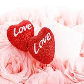 Love Wallpapers Free icon