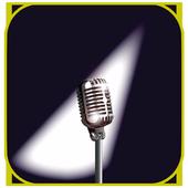 Audio Recorder Plus Pro - Sound Recorder Pro icon