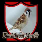 Master Kicau Kenari Blackthroat icon
