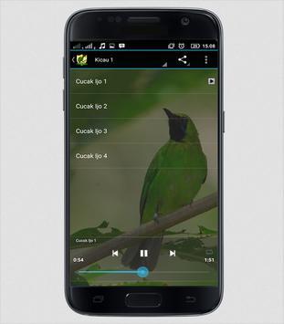 Master Kicau Cucak Ijo screenshot 1