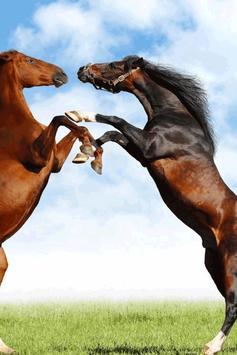 Horse Wallpaper screenshot 2