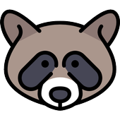 Racoon Cute Wallpaper icon