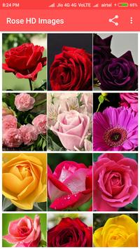Rose HD Images apk screenshot
