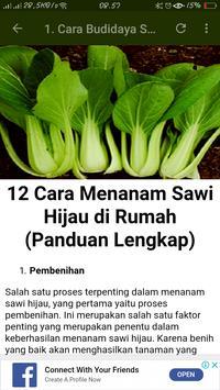 Cara Budidaya Sayuran screenshot 3