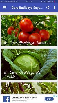 Cara Budidaya Sayuran screenshot 2