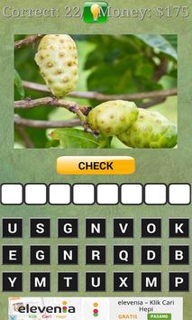 Tebak Buah-buahan apk screenshot