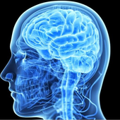 Best Brain Booster icon