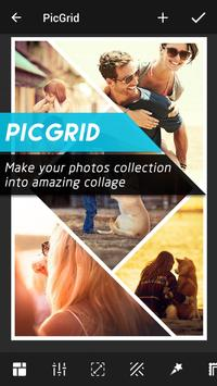 PicGrid Poster