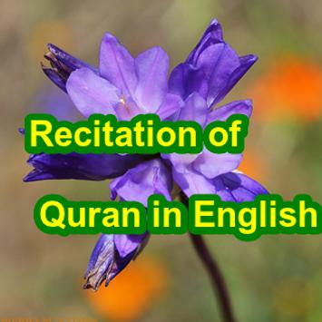 Recitation of Quran in English apk screenshot