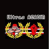 ultras agadir icon