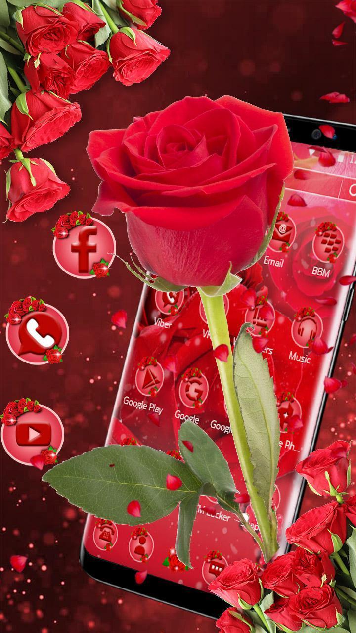 Tema Bunga Mawar Merah For Android Apk Download