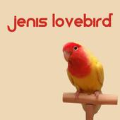Jenis LoveBird icon
