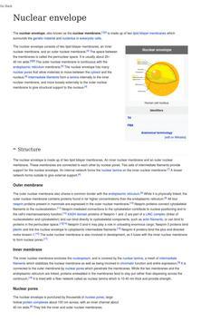 cell nucleus apk screenshot