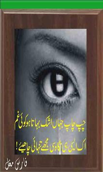 Ankhun Ki Shayri (Urdu Poetry) screenshot 3