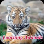 Kids Animal Learning icon