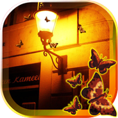 Butterfly Night icon