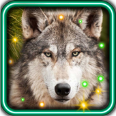 Wolf Best HD live wallpaper icon
