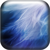 Soft Feathers Live Wallpaper icon